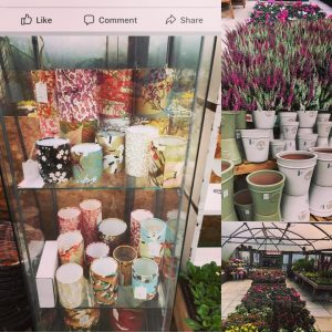 Lots of little led light lanterns, floor and table lamps del...